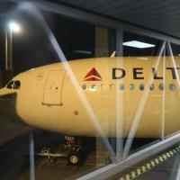 Delta pone toques especiales en su clase económica para diferenciarse