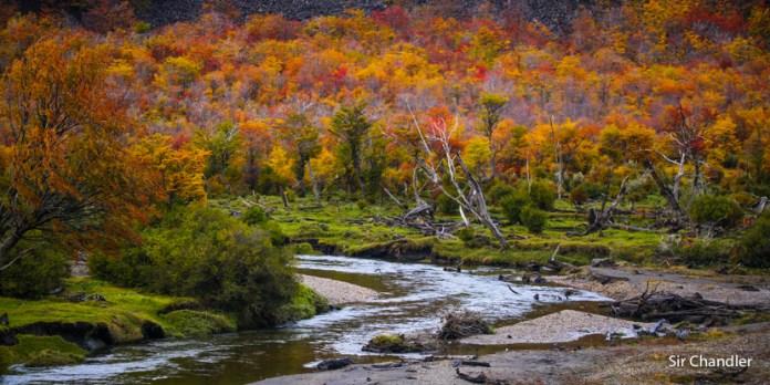 Un paseo por el parque nacional Tierra del Fuego