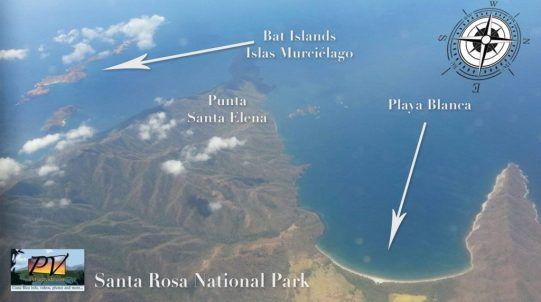 Papagayo Dive Sites - Sirenas Diving, Scuba Diving Adventures