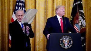 Donald Trump, jerusalem conflict, Israel Palestine Conflict, donald trump peace plan, donald trump middle east plan
