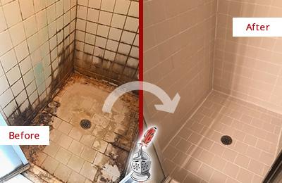 bonita springs tile sealing tile