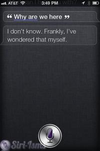 Why Ae We Here? - Siri Doesnt Know
