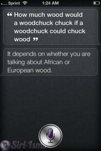 Siri Answers: How Much Wood Would A Woodchuck Chuck?