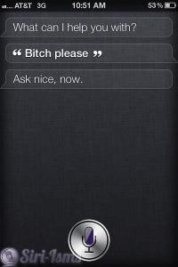 Bitch Please! ~ Funny Siri Sayings