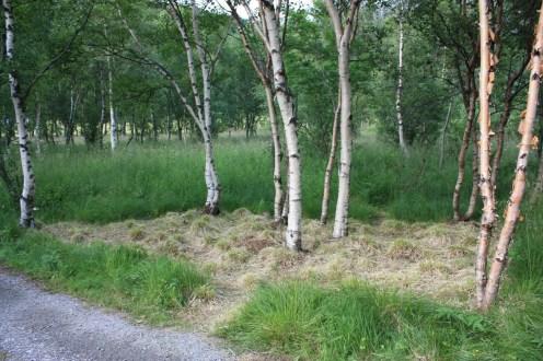 KJERRINGØY-LAND-ART-BIENNALE-2009