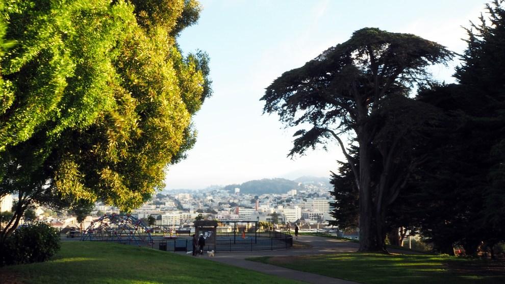 Alta Plaza Park San Francisco, sirivil.no