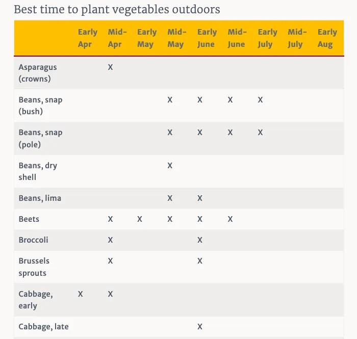 plant outdoor sec1