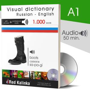 Visual dictionary with audio: Russian-English (paper)