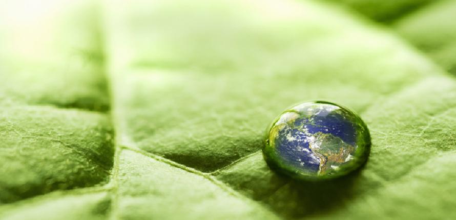 Risultati immagini per eco sustainability