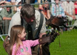 Country Show Falconry display