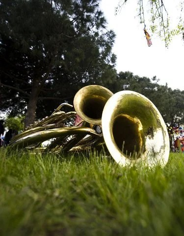 Saxophones on grass at music festival