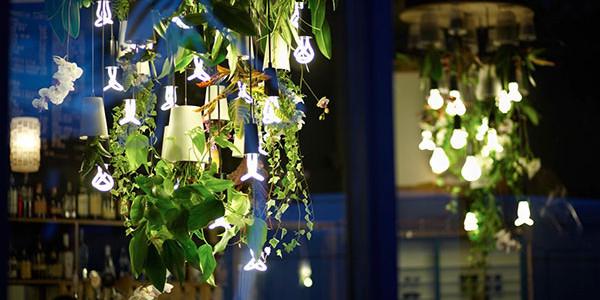 Luminária sem lâmpada com plantas