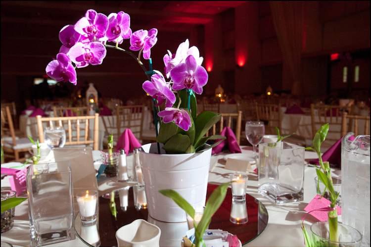 Arranjo de orquídea na decoração de casamento