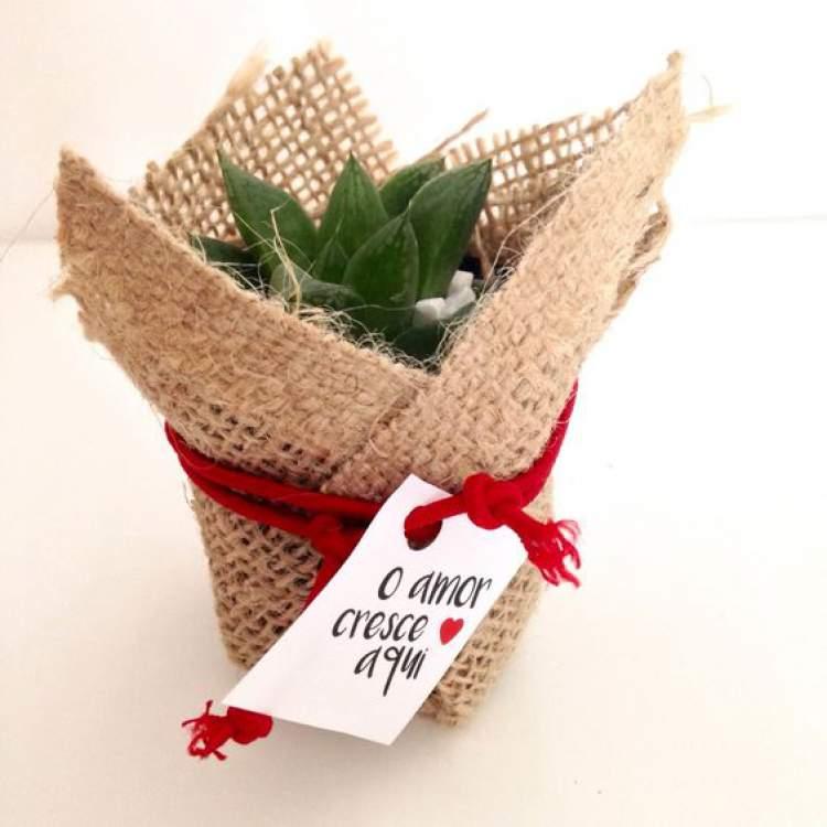 Sugestão para lembrancinha de casamento com plantinhas