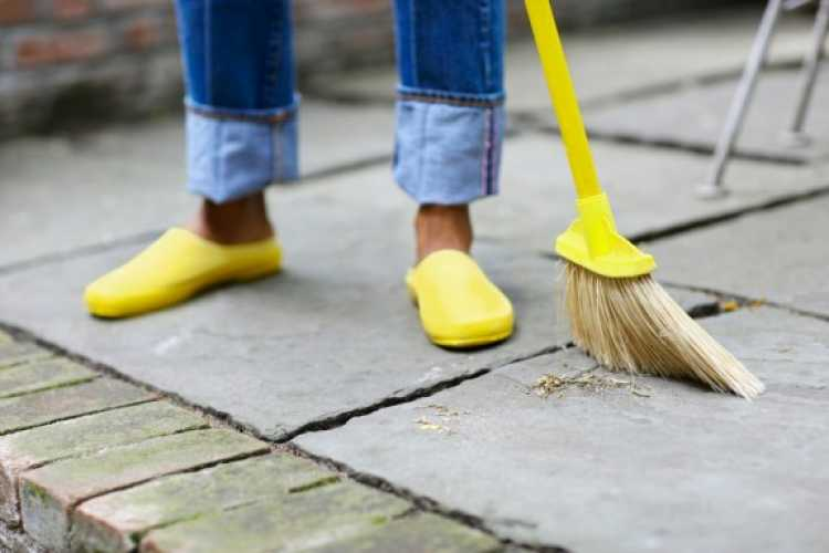 Limpeza do quintal