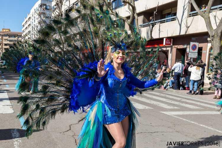 fantasia de carnaval pavão