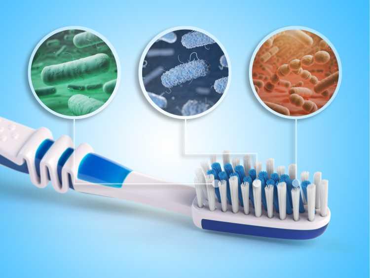 Escova de dente é um dos objetos de casa que são muito sujos