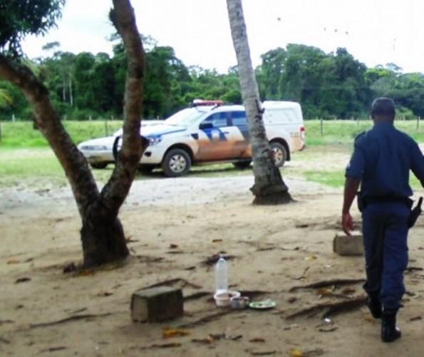 PM encontra carro depenado em plantação  de mamão na estrada do Pontal