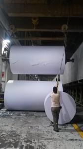 papel ledesma