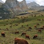 Observatoire photographique de paysages en Savoie