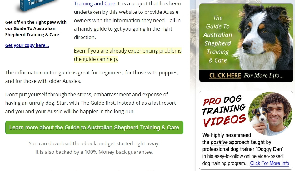 Anton promotes his own ebook and trusted affiliate products with banners in the right hand column of his web pages.