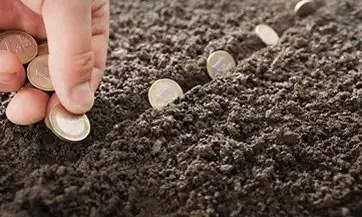 Reglas para invertir y multiplicar tu dinero