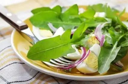 Beneficios de consumir hojas de diente de león