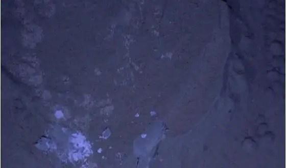 Fotos: Así es Marte de noche