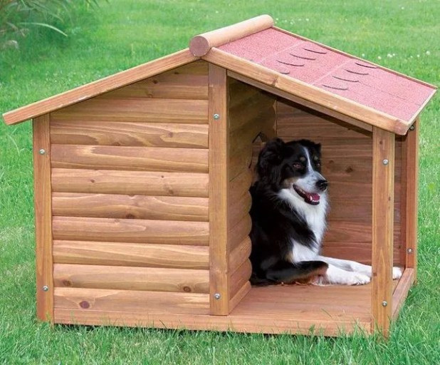 Casas para perros originales