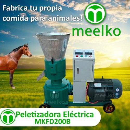 4- MKFD200B - HORSE