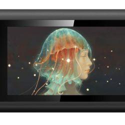 xp-pen artist 12 pen display tablet