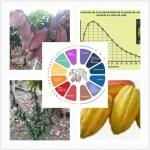 Fertilizantes biotech global cacao