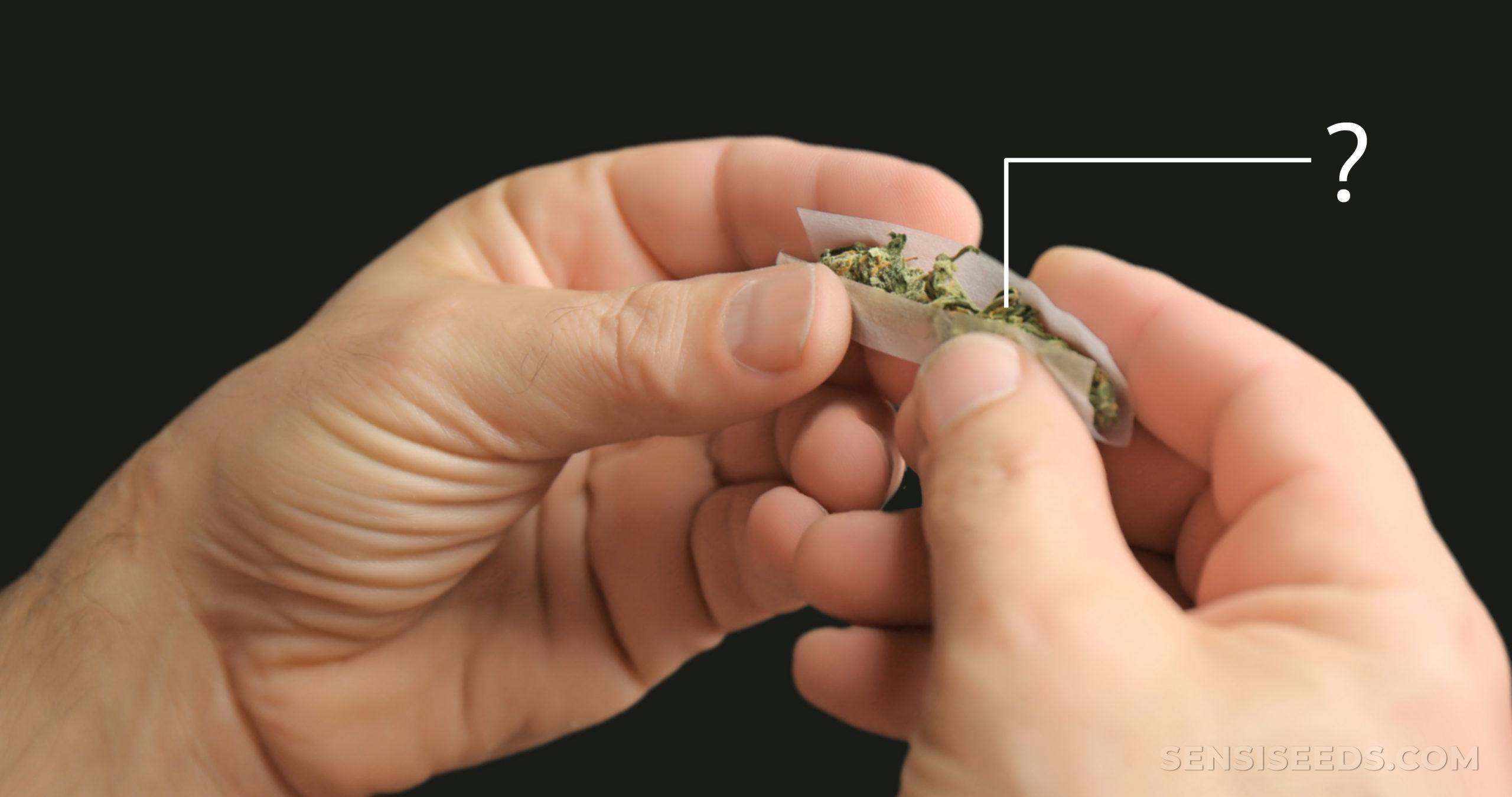 Many-deaths-attributable-cannabis-scaled