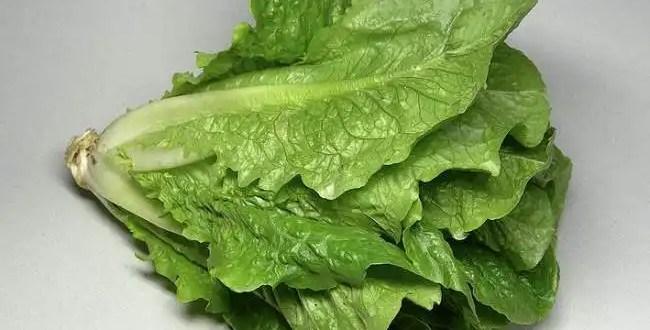 Las verduras de hoja verde protegen el sistema digestivo