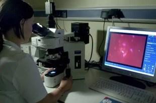 Hombres que padecen cáncer congelan su semen para poder ser padres a futuro