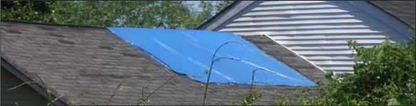 New-Roof-Blue-Tarp