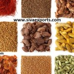 spices manufacturers, whole spices manufacturers, ground spices manufacturers,spices manufacturers in india,whole spices manufacturers in india,ground spices manufacturers in india,