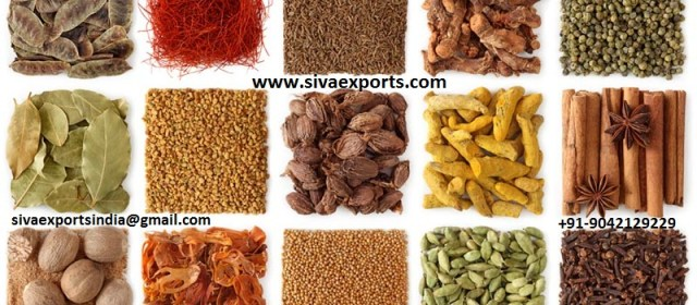 whole spices manufcaturers, spices manufacturers, ground spices manufacturers,spices manufacturers in india,whole spices manufacturers in india,ground spices manufacturers in india,