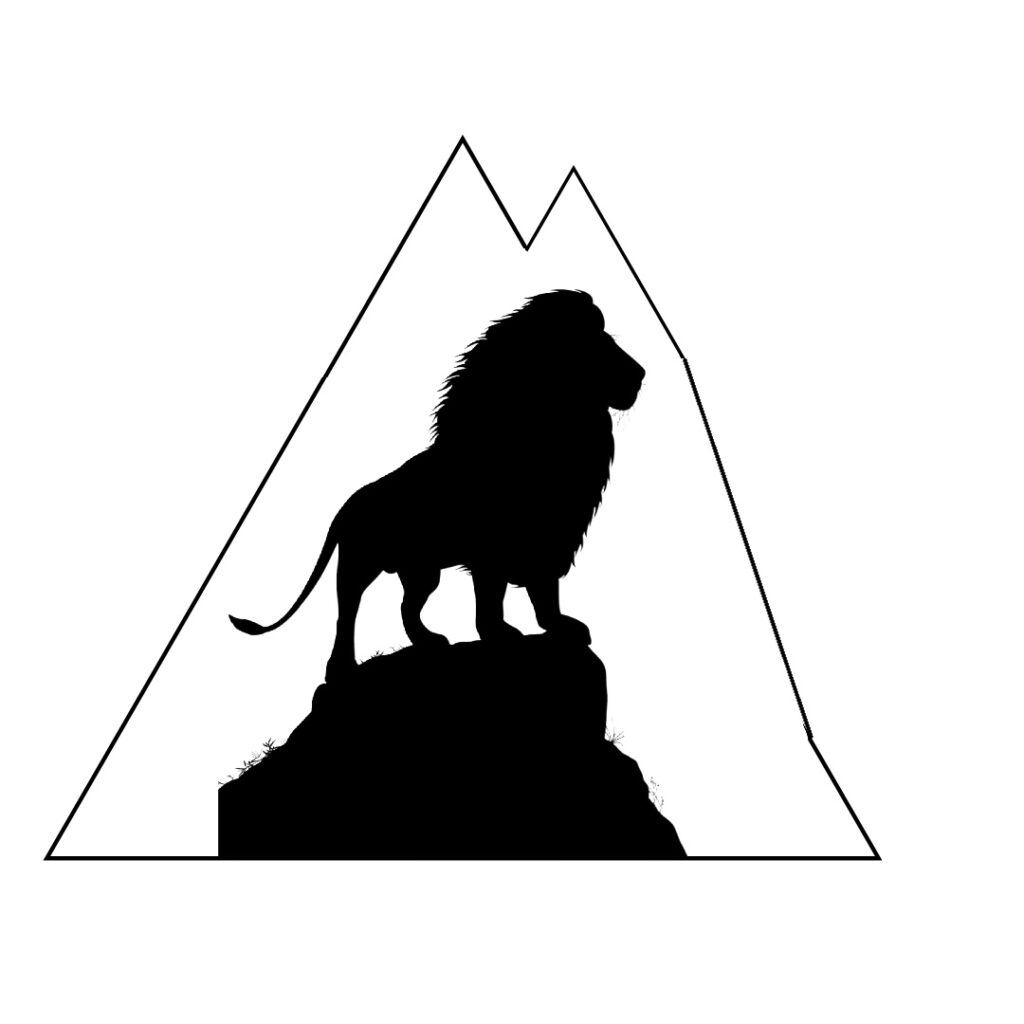 Lions Mountain Literary Youth Scholarship Application