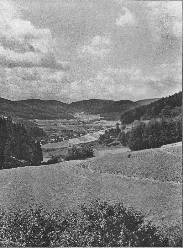 Wittgensteiner Land bei Laasphe. Heschenk des Landesfremdenverkehrsverbandes Westfalen, Dortmund, 1917 ?, Quelle: Slg. Karl-Ernst Schütze, Detmold