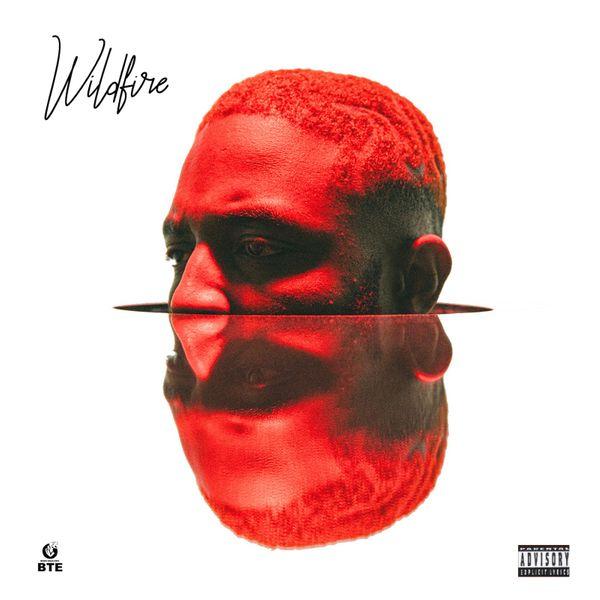PrettyboyDO Wildfire Album
