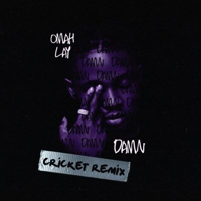 Omah Lay – Damn Cricket Remix