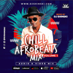"Dj Shinski – ""Chill Afrobeat 2020 Naija Mix Vol 1"""
