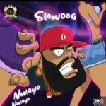 Nwayo Nwayo by Slowdog ( Instrumental )