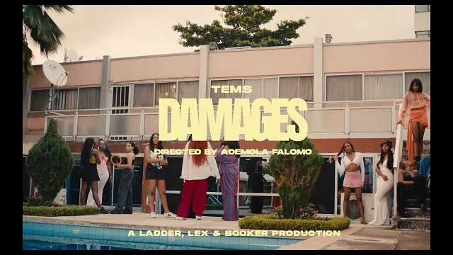 Video Tems – Damages