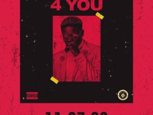 Omotayo – 4 You