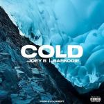 Joey B Cold ft Sarkodie Mp3 Download