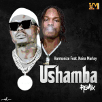 Harmonize Ushamba Remix ft. Naira Marley Mp3 Download