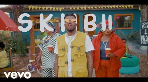 VIDEO Skiibii Are You Vhere
