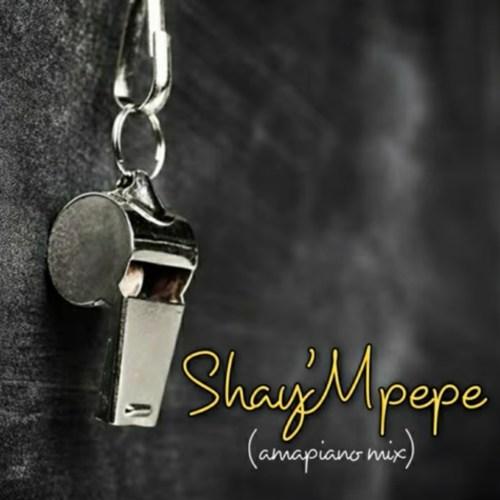 Muzzy D Pilot Shaympempe Amapiano Mix Ft. Dj Mavuthela Ribby De Dj Rhino mp3 download